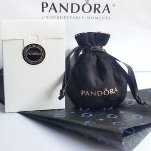 Pandora Jewelry - California Adventure ''Mickey's Fun Wheel'' Charm